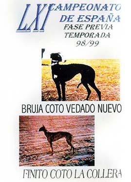 LXI REGIONAL 98-99 FINA DVD