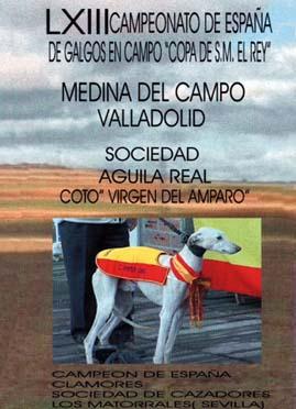 LXIII MEDINA ESPAÃ'A 2001 DVD